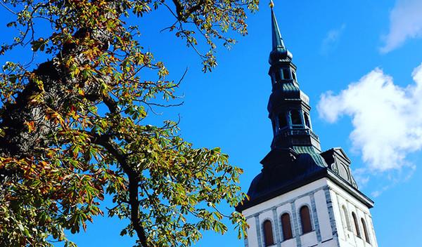 愛沙尼亞森林歷險記