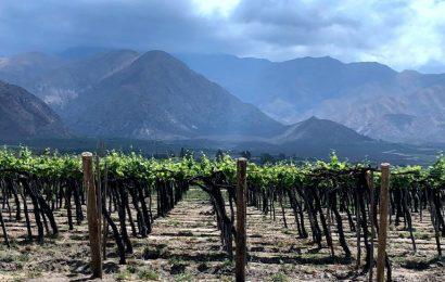 阿根廷酒鄉之旅,每天睡到自然醒,日日喝著吃著睡著的酒日子!